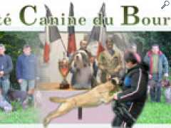 picture of Exposition Canine Internationale